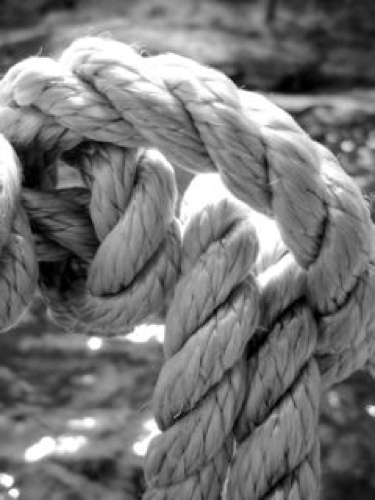 Rope by Loretta Fontaine