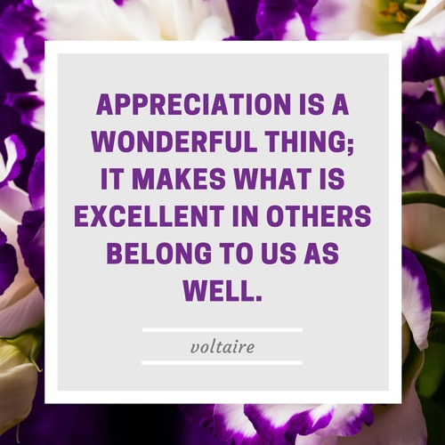 Voltaire on Appreciation